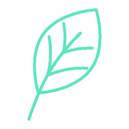 jolihuit-picto-feuille-vert